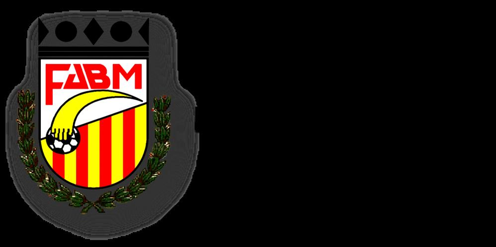 Federación Aragonesa de Balonmano